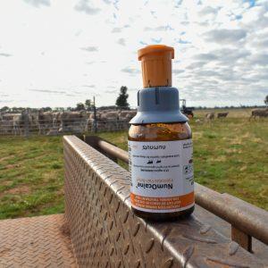 Empty NumOcaine bottle